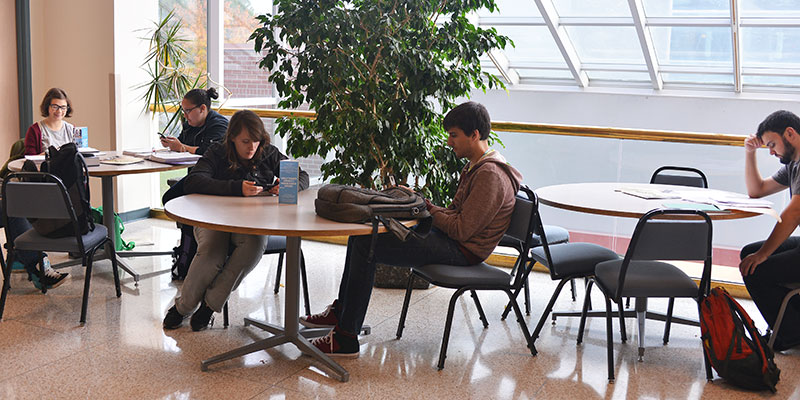 Students studying in cafeteria
