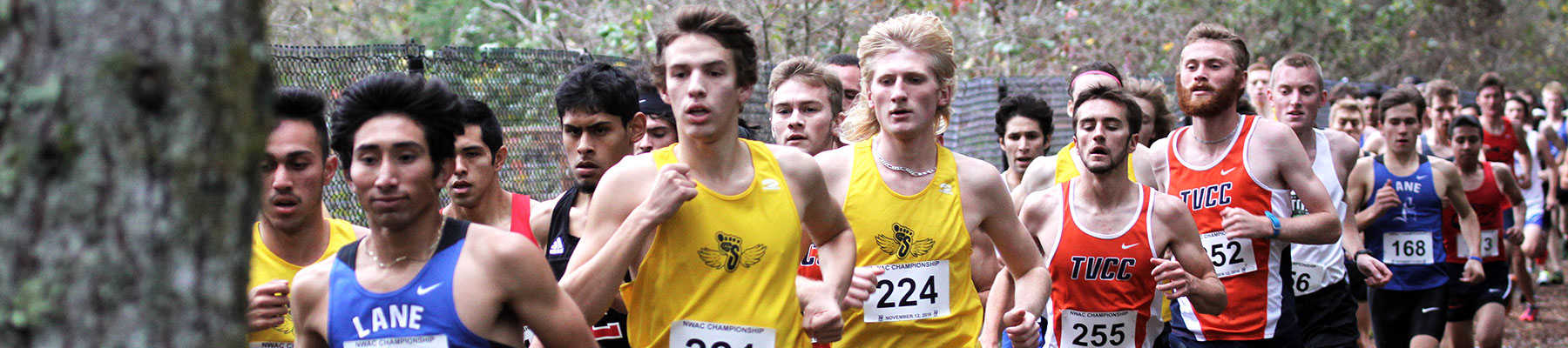 The Bigfoot Men's Cross Country team racing against other teams