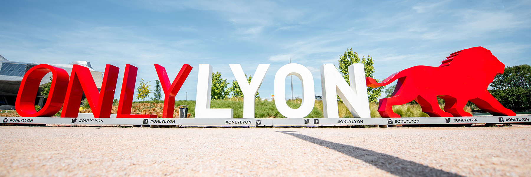 Only Lyon Large Text Sculpture