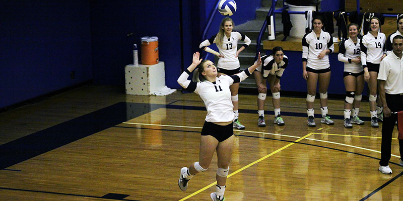 Volleyball player setting up a serve