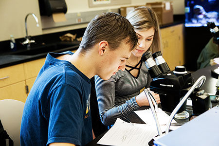 Students working on an assignment in front of a microscope.